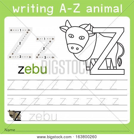 Illustrator of writing a-z animal z for kid