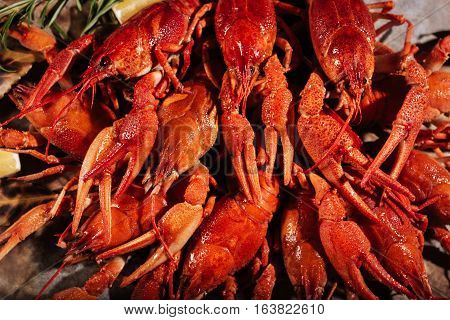 Well cooked. Close up of tasty crayfishes lying on pita in restaurant while being served on a table.