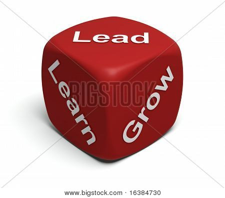Learn, Grow, Lead