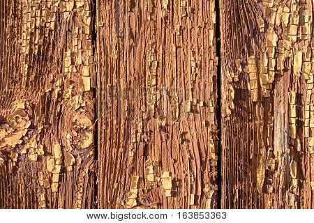 Flaking Brown Paint On Wood Texture
