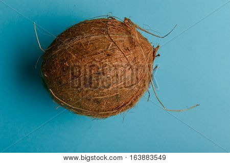 Coconut Isolated On Blue Background