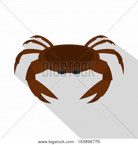 Edible brown crab icon. Flat illustration of rdible brown crab vector icon for web isolated on white background
