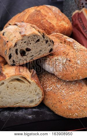 Vertical image in variety of fresh loaves of bread