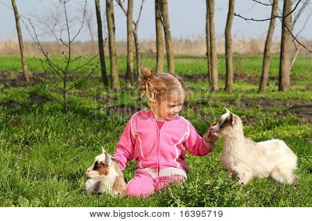 child and two little goats