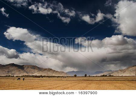Sky of Tibet