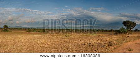 African savanna in Queen Elizabeth N.P., Uganda