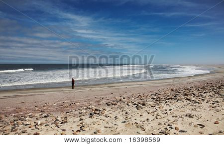 Atlantic Ocean, Skeleton Coast, Namibia