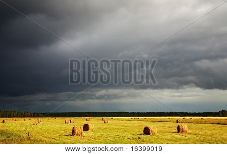 Summer landscape with hayfield and storm clouds