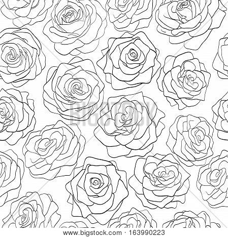 seamless pattern of roses black and white