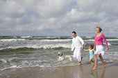 image of happy dog  - Happy family with dog on the beach - JPG