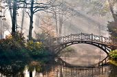 stock photo of hazy  - Old bridge in autumn misty park  - JPG