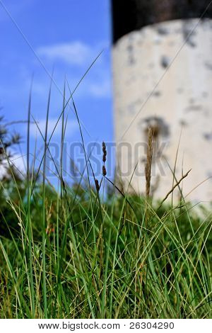 summer scene of countryside with lighthouse building in background, shallow depth of field