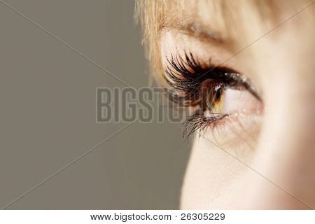 beautiful hazel eye with luscious eyelashes.