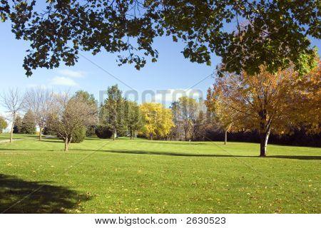 Campo de golfe Fairway