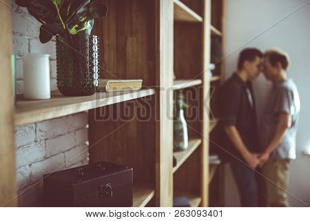 Wall Unit With Gay Couple