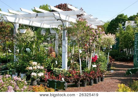 A display pergola in the center of a garden center.