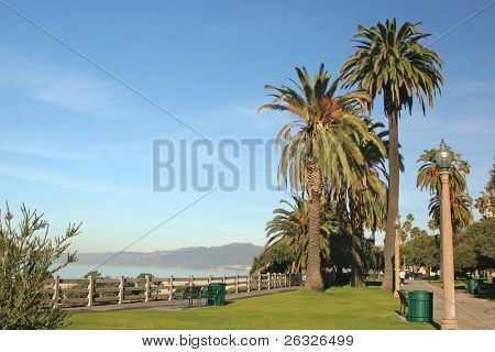 A view of the ocean from the park above the beach in Santa Monica, California