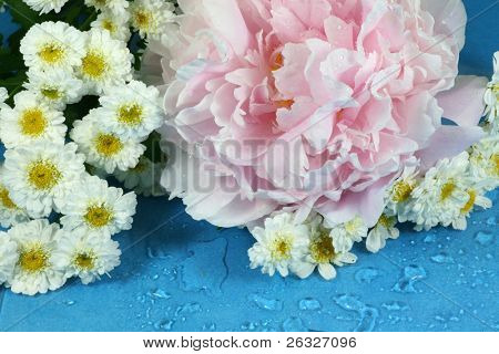 Peonies and feverfew covered with water droplets in a springtime bouquet.