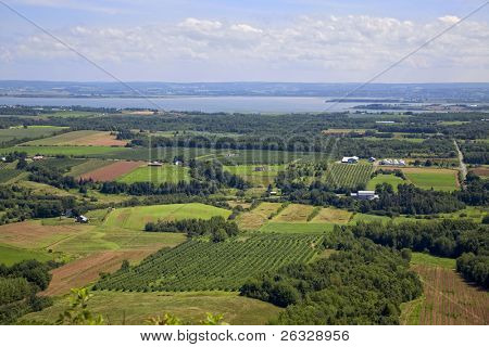 Aerial view of farmland with orchards along the coast of Nova Scotia, Canada.