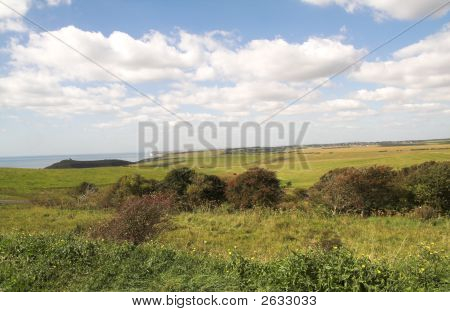 Downland View