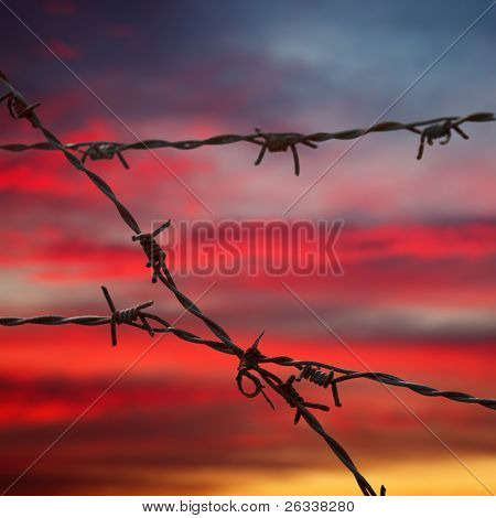 Barbed wire on sunset sky background - shallow DOF, focus on foreground