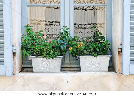 Provencal Window