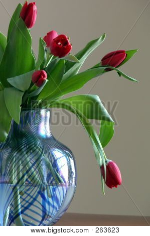 Tulips In Blue Vase Side View