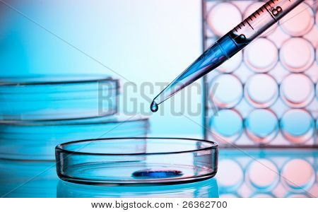 Pipette adding fluid to one of petri plate