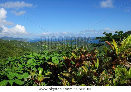 St. John, Us Virgin Islands Panorama
