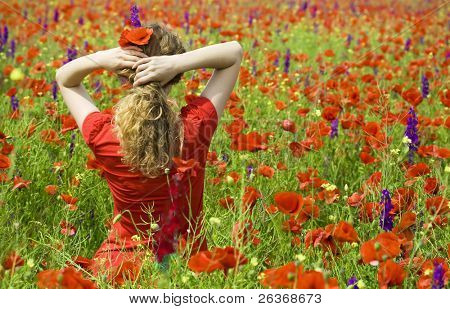 beautiful girl with flowers in her hair in the middle of a  field with poppies and violet flowers