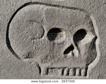 Skull Engraving