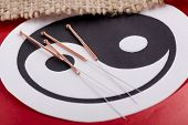 Needles for acupuncturist shown on Chinese Yin-Yang sign.