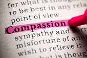 Fake Dictionary, Definition Of The Word Compassion. poster