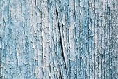 The Surface Of The Old Wooden Board, Painted Blue Paint. The Wall Of A Wooden House. The Paint Crack poster