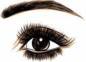 Eye On White Background. Woman Eye. The Eye Logo. Eyes Art. Human Face poster