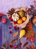 Decorative Seasonal Composition Of Bright Autumn Leaves, Pumpkins, Apples And Rose Petals On A Woode poster