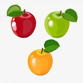 Beautiful Vector Illustration Of Red, Green, Yellow Ripe Apple Isolated On White Background. Abstrac poster