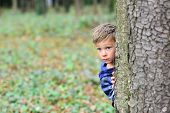 Its A Little Scary. Little Boy Hide Behind Tree. Small Boy In Scary Forest. Little Child Play Scary  poster