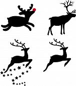 stock photo of rudolf  - Reindeer selection - JPG