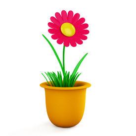image of flower pot  - Flower in pot - JPG