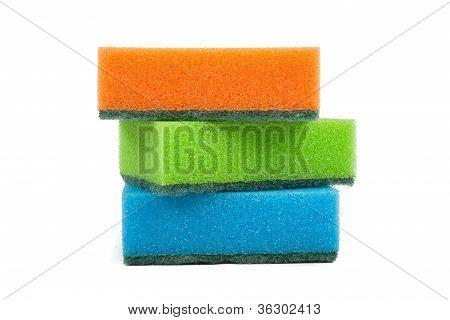 Three new sponges