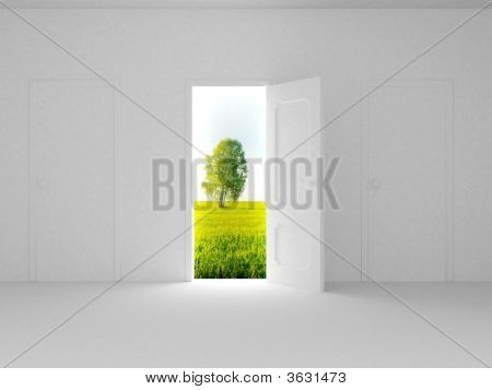 Landscape Behind The Open Door
