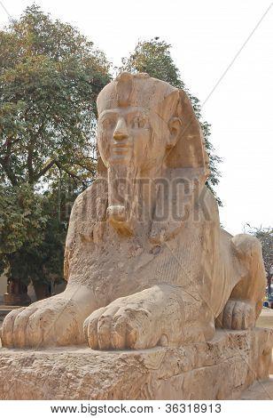 Estátua Esfinge de alabastro
