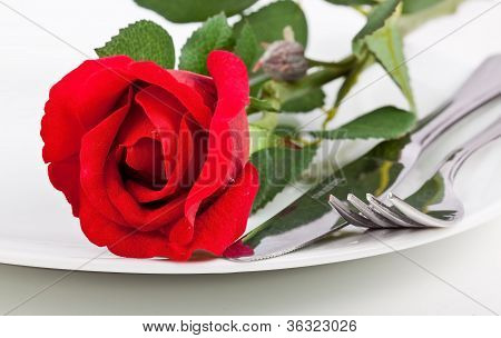 Close Up Of Red Rose, Plate And Cutlery