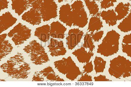 Colorful Animal skin textures of giraffe. Vector illustration wild pattern
