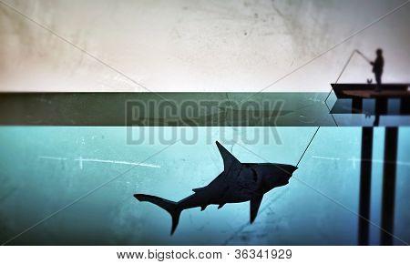 Fisherman Hunting A Big Shark
