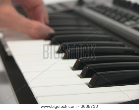 Human Playing On Piano Rol