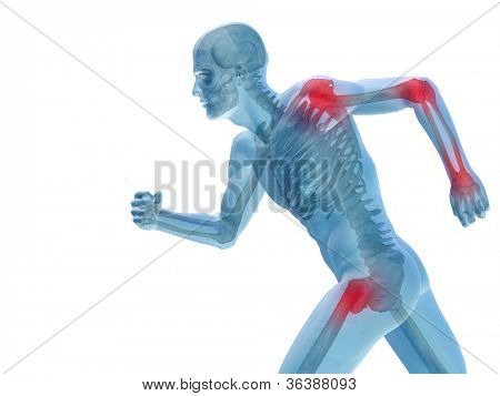 High resolution conceptual 3D human for anatomy,medicine and health designs, isolated on white background. A man made of a skeleton and a transparent blue body as in a x-ray with red painful hotspots