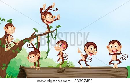 illustration of group of monkeys and nature