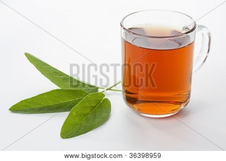 Sage tea in a glass cup with sage leaves
